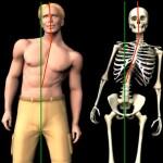 E' vero che la tua schiena non è dritta ed il tuo bacino storto?